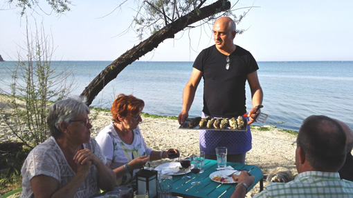 Barbecue at the sea | Alkyóna Beach