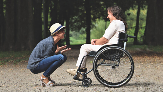 Travel companion with a wheelchair user